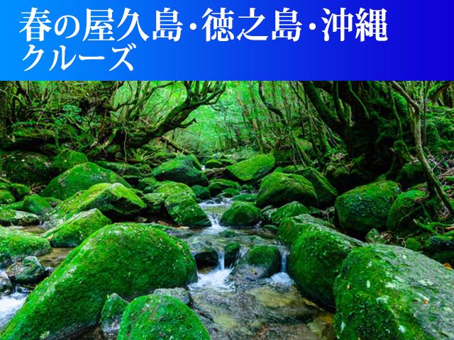 春の屋久島・徳之島・沖縄クルーズ