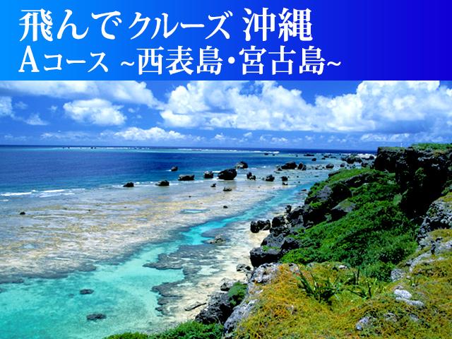飛んでクルーズ沖縄<Aコース>~西表島・宮古島~