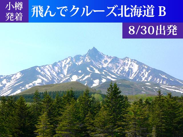 小樽発着 飛んでクルーズ北海道Bコース[8/30出発]
