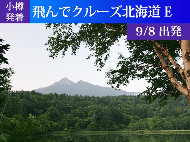 小樽発着 飛んでクルーズ北海道Eコース[9/8出発]