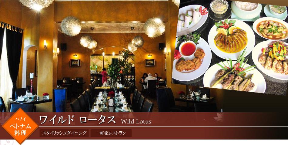 ワイルド ロータス Wild Lotus