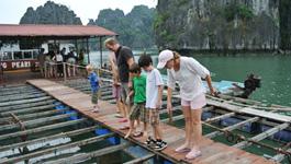 水上漁村訪問
