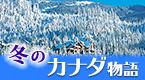 冬のカナダ物語