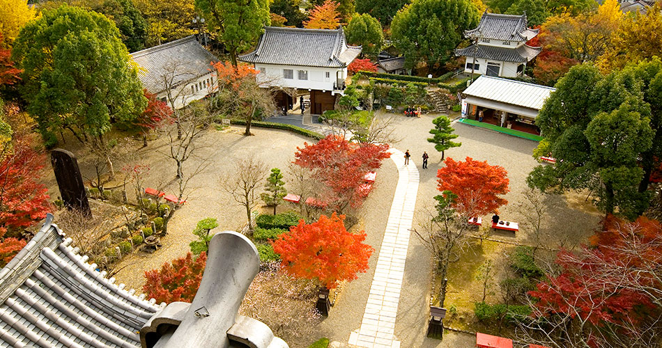 Inuyama Castle Town ticket
